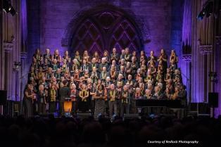 Lichfield Festival 2017